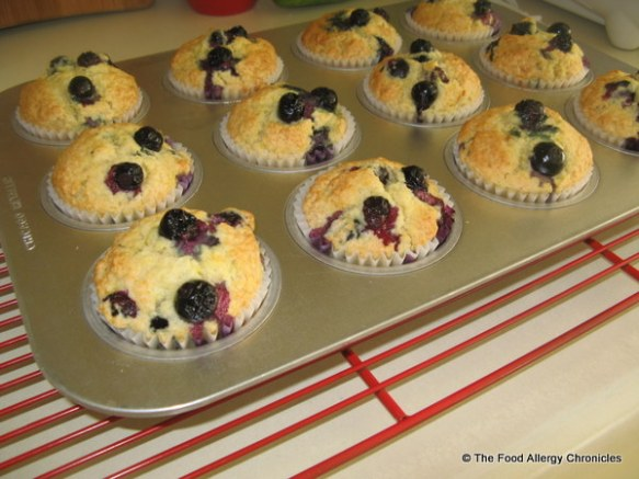 Dairy, Egg, Soy and Peanut/Tree Nut Free Lemon Blueberry Muffins cooling