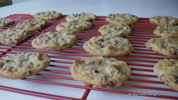 Dairy, Egg and Peanut/Tree Nut Free Chocolate Chip Cookies cooling