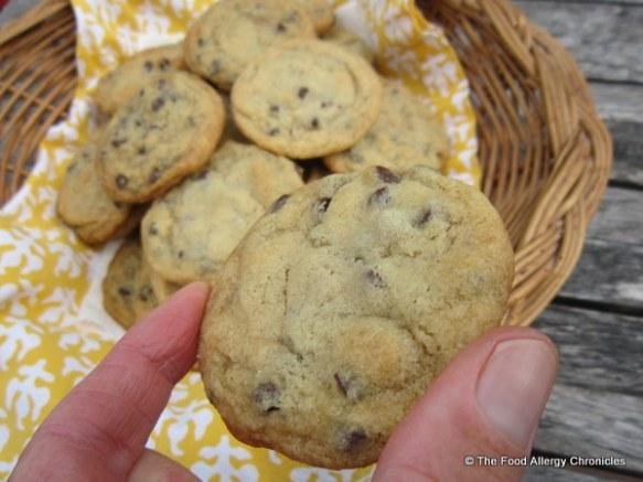 Enjoying a Dairy, Egg and Peanut/Tree Nut Free Chocolate Chip Cookie