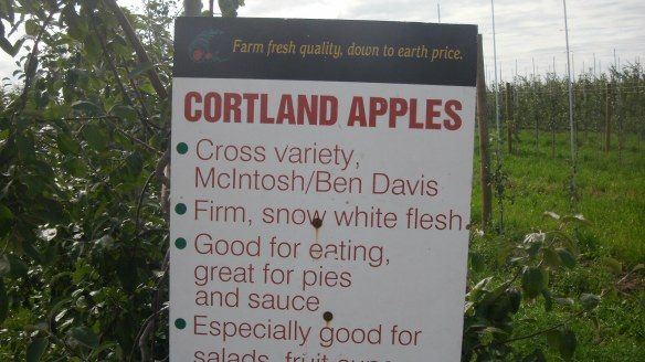 Cortland apple sign at Wilson's Apple Farm