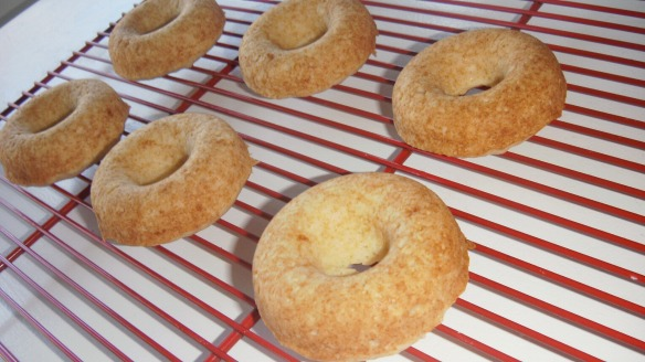 dairy,egg,soy,peanut/tree nut doughnuts cooling on rack