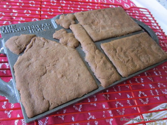 baked dairy,egg and peanut/tree nut free gingerbread in gingerbread house mold from Lee Valley