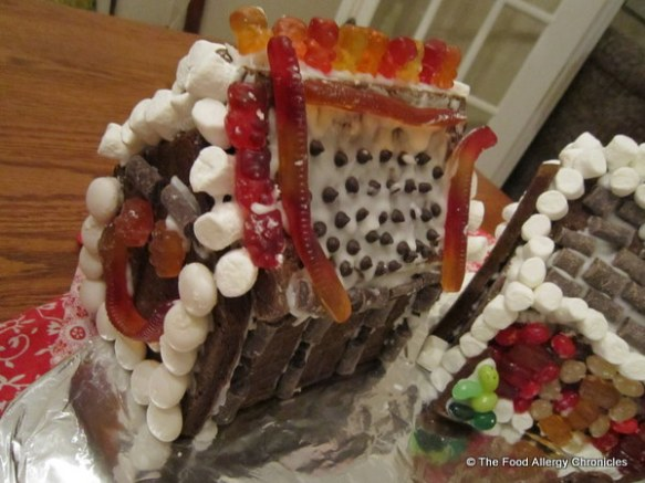 matthew's decorated dairy,egg and peanut/tree nut free gingerbread house