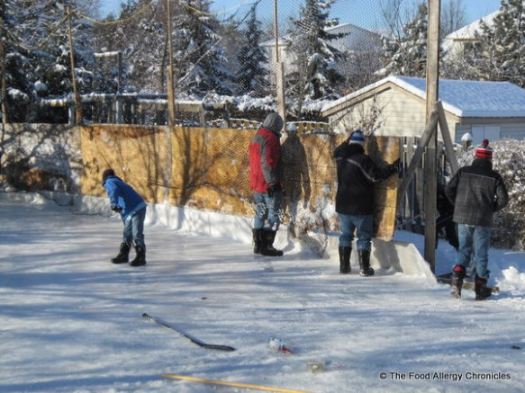 putting up the boards on the backyard rink, ottawa, 2011