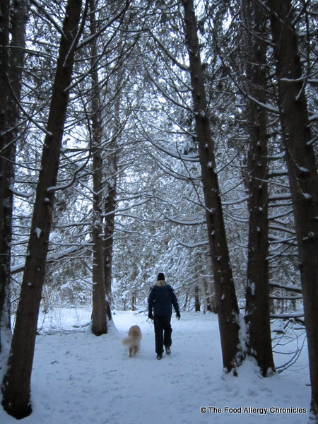 walking in the woods, ottawa, 2011