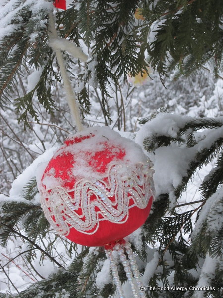 christmas decoration on tree in the woods, ottawa, 2011