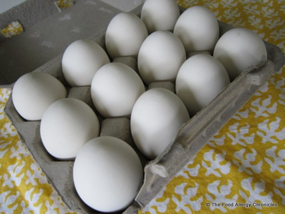 opened carton of ceramic eggs from EggNots