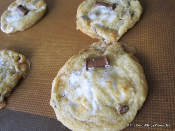 Dairy, Egg, Soy and Peanut/Tree Nut Free Chocolate Chip Cookies with Marshmallows
