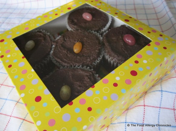 Surprise Gluten, Dairy, Egg, Soy and Peanut/Tree Nut Free Chocolate Cupcakes