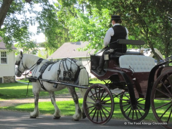 Horse drawn carriage in Niagara on the Lake 2012