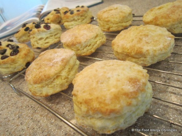 Shortcakes/Scones cooling on cooling rack