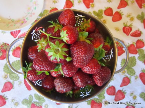 A bowl full of freshly picked strawberries