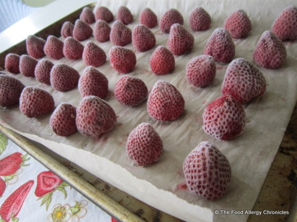Frozen Strawberries on a cookie sheet