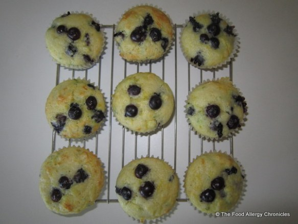 Dairy, Egg, Soy and Peanut/Tree Nut Free Lemon Blueberry Zucchini Muffins cooling