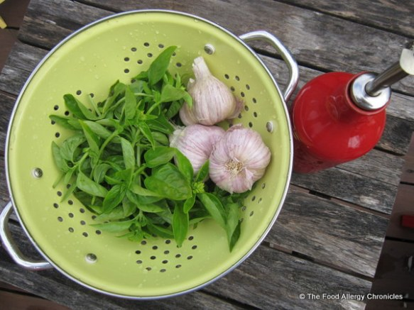 Fresly picked basil, garlic and extra virgin olive oil