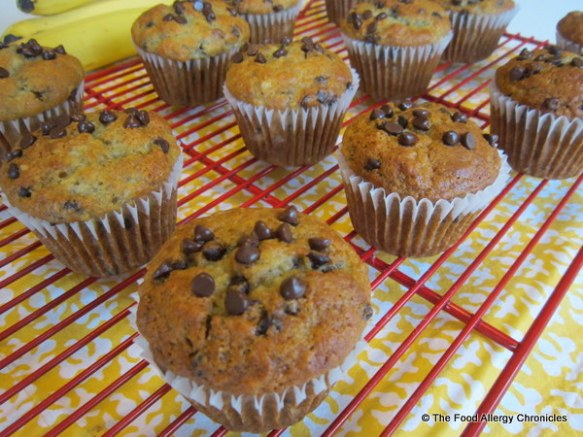 Dairy, Egg, Soy and Peanut/Tree Nut Free Chocolate Chip Banana Muffins cooling on cooling rack