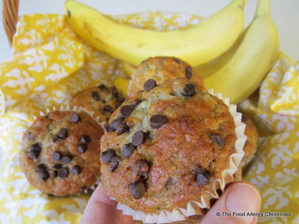 Enjoying a Dairy, Egg, Soy and Peanut/Tree Nut Free Chocolate Chip Banana Muffin