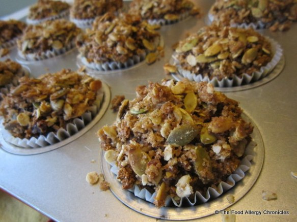 Just out of the oven Dairy, Egg, Soy and Peanut/Tree Nut Free Oatmeal Pumpkin Cranberry Muffins