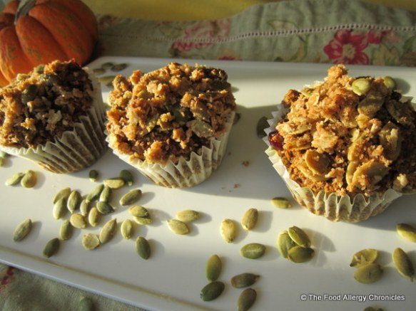 Dairy, Egg, Soy and Peanut/Tree Nut Free Oatmeal Pumpkin Cranberry Muffins