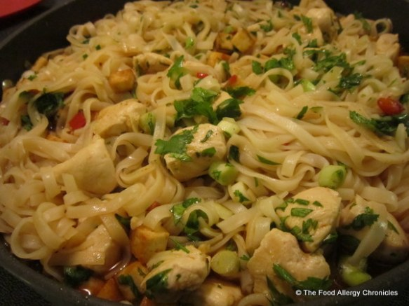 Fish, Shellfish, Egg and Peanut/Tree Nut Free Pad Thai