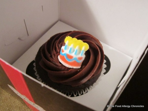Peanut/Tree Nut Free Chocolate Cupcake from The Cupcake Shoppe