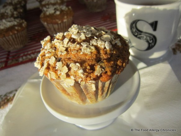 Dairy, Egg, Soy and Peanut/Tree Nut Free Honey Oat Muffins