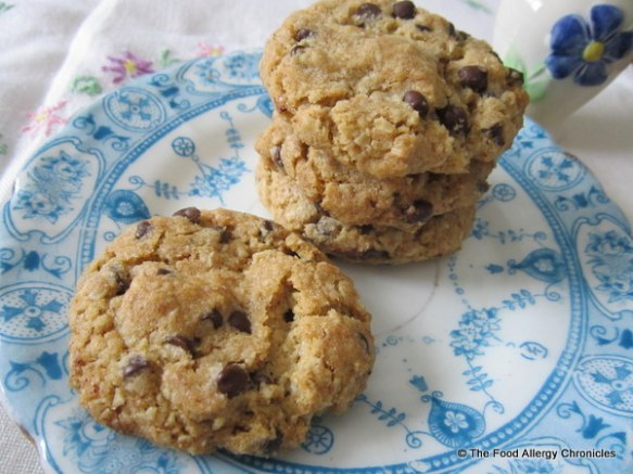 A plate of Dairy, Egg, Soy and Peanut/Tree Nut Free Wholewheat Oatmeal Chocolate Chip Cookies