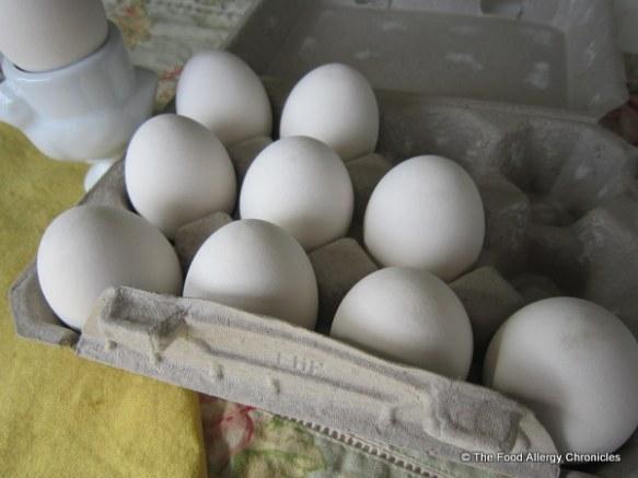 Eggnots ceramic dyeable eggs