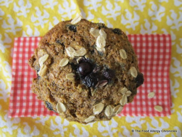 A Dairy, Egg, Soy and Peanut/Tree Nut Free Orange Blueberry 3 Grain Muffin