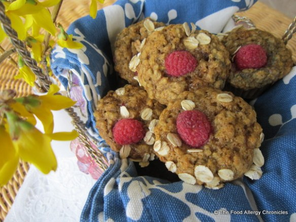 A basket of Dairy, Egg, Soy and Peanut/Tree Nut Free Oatmeal Lemon Raspberry Muffins