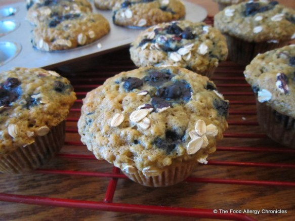 Dairy, Egg, Soy and Peanut/Tree Nut Free Oatmeal Wild Blueberry Muffins