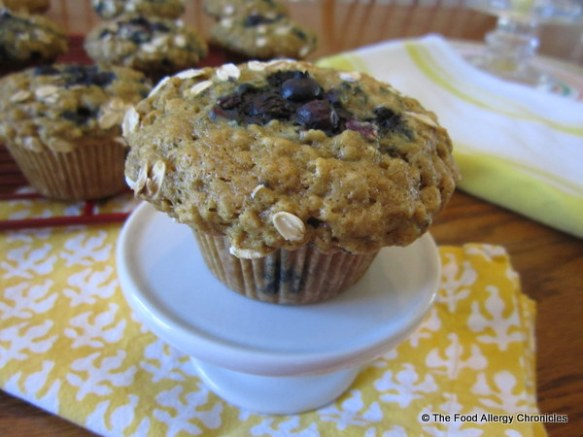 Dairy, Egg, Soy and Peanut/Tree Nut Free Oatmeal Wildblueberry Muffins