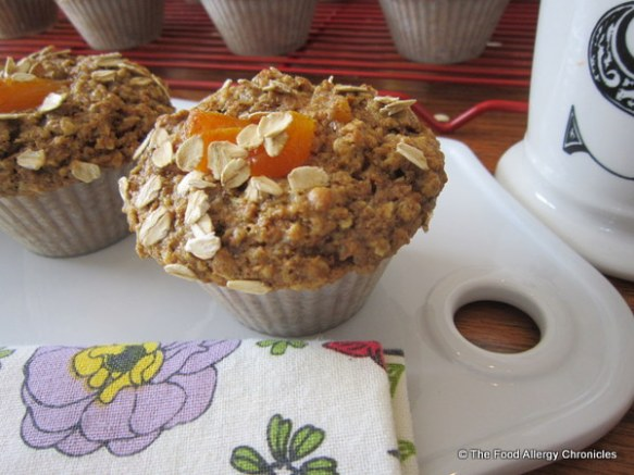 Dairy, Egg, Soy and Peanut/Tree Nut Free Apricot Oatmeal Muffins