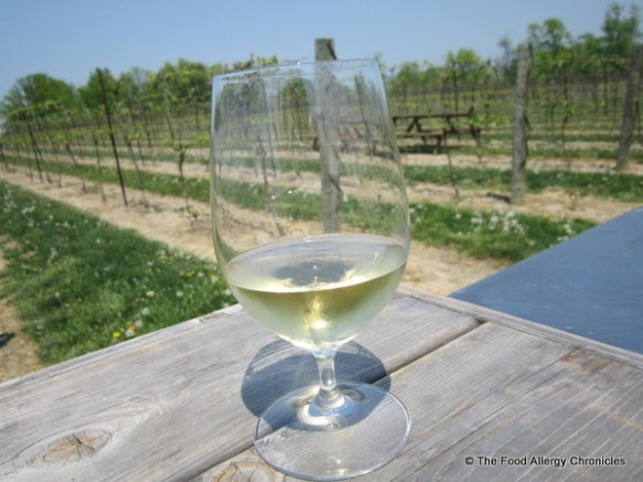 Enjoying a glass of Chardonnay wine overlooking the Inniskillin vineyard