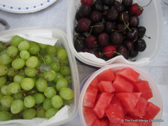 Containers of grapes, cherries and cubed watermelon for our picnic at Stratford