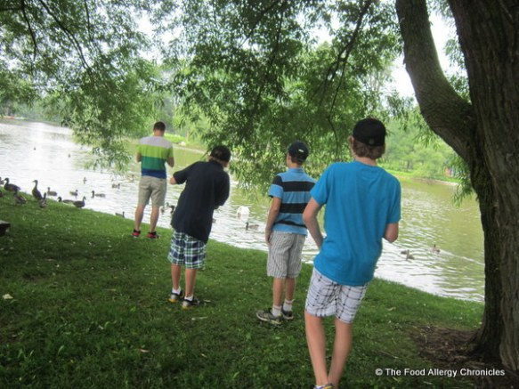 The boys checking out the ducks and swans on the Avon River in Stratford