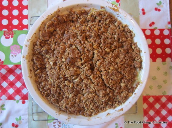 Gluten, Dairy and Peanut/Tree Nut Free Oatmeal Apple Crisp